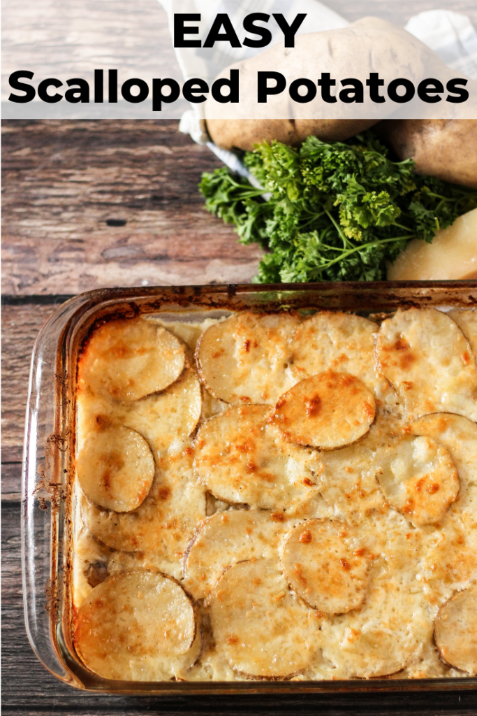 Easy scalloped potatoes, golden brown in a baking dish