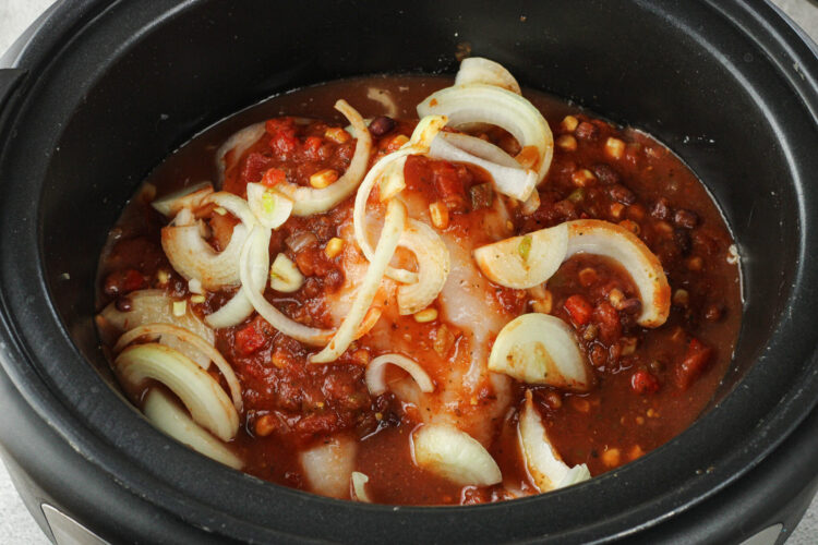 chicken, onions and salsa in a crock pot