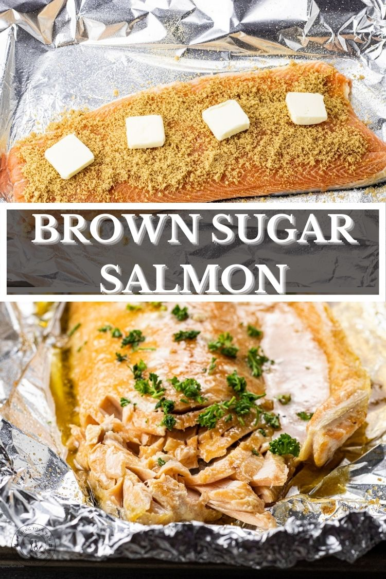 Brown Sugar Salmon is so simple to make, uses just a few simple ingredients and is ready in just 30 minutes.