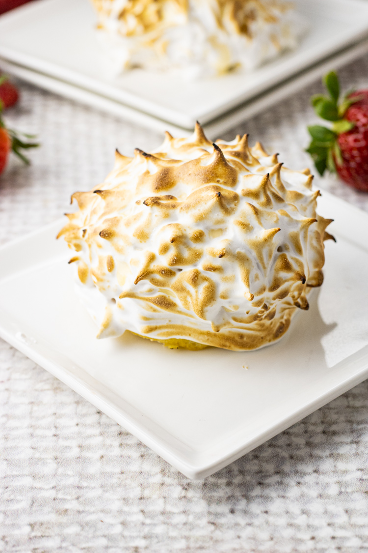 small baked alaska on a white plate